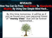 your wealth magnet review - scam or legit?