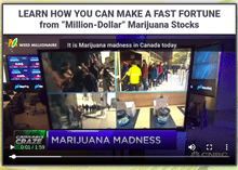 weed millionaire review scam